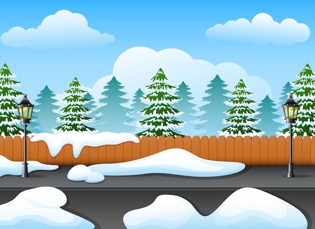 Winter forest landscape with fir tree and snow on the street