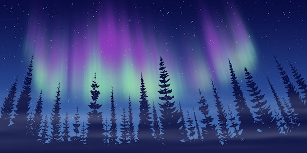 Winter landscape, dusk and polar lights, forest and sunset light