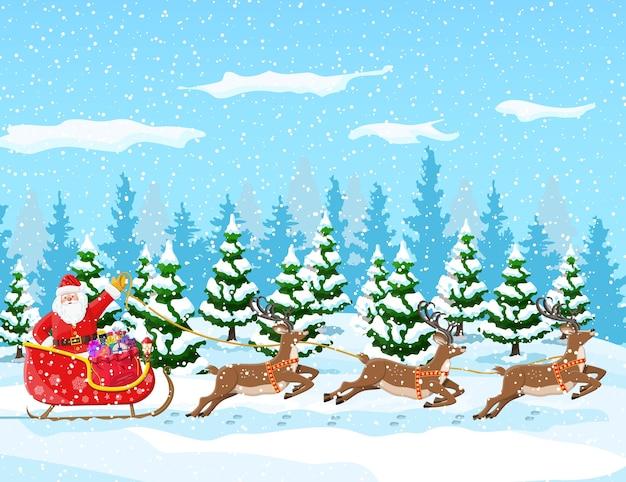 モミの木の森と雪のある冬景色