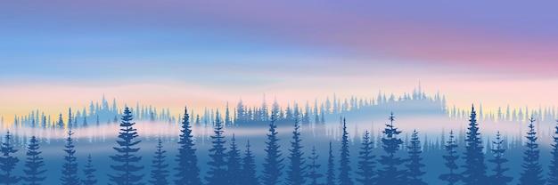 森と夕焼け空と冬の風景