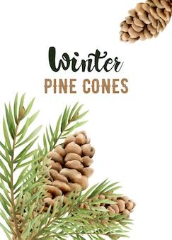 Winter pine cones on leaves