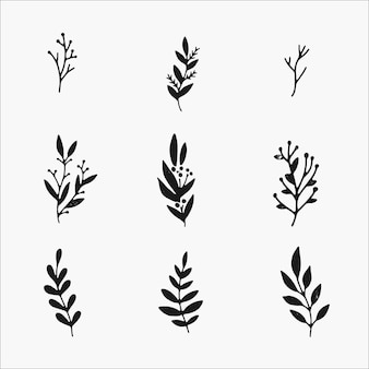 Winter plants and botanical elements set. cute hand drawn illustrations , simple black and white isolate