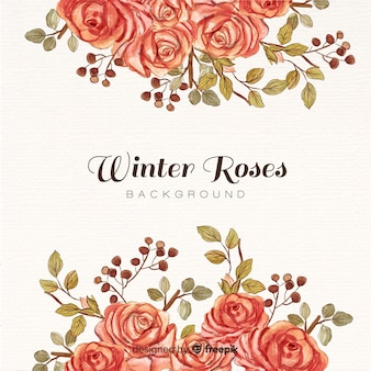 Winter roses background