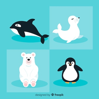Winter sea animal pack
