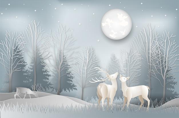 Winter season of deer under the view pine forest landscape