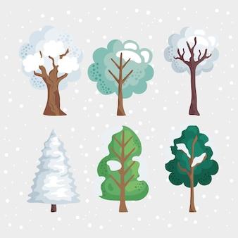 겨울철 숲