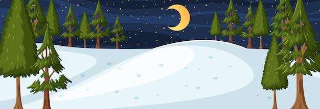 밤 시간 가로 장면에서 자연 공원과 겨울 시즌