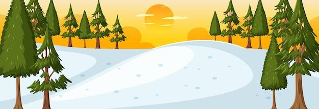 일몰 시간 수평 장면에서 자연 공원과 겨울 시즌