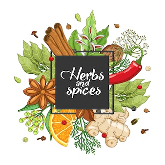 Winter square design with spices and herbs