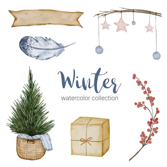 Зимняя коллекция акварелей с ветками, листьями и цветами