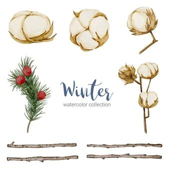 枝、葉、花の冬の水彩画コレクション