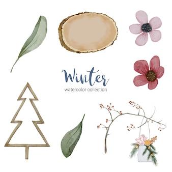 Collezione di acquerelli invernali con rami, foglie e fiori