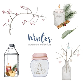 Collezione di acquerelli invernali con rami, foglie e vasi.