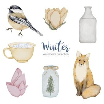Collezione di acquerelli invernali con oggetti per uso domestico, uccelli e volpi