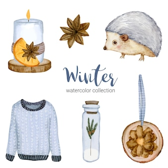 長袖、瓶、キャンドル、ハリネズミの冬の水彩画コレクション。