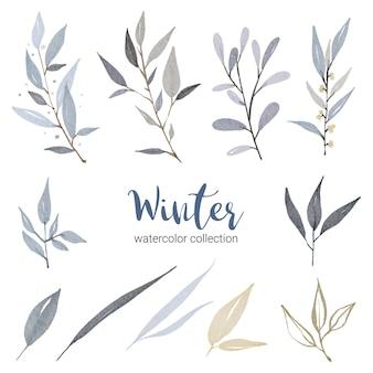 さまざまな種類の葉を持つ冬の水彩画コレクション