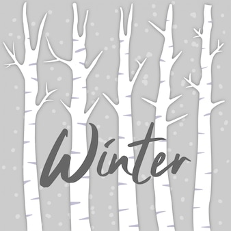 Winter with birch tree background