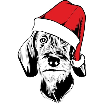 クリスマスのためのサンタの帽子のワイヤーヘアードダックスフント犬