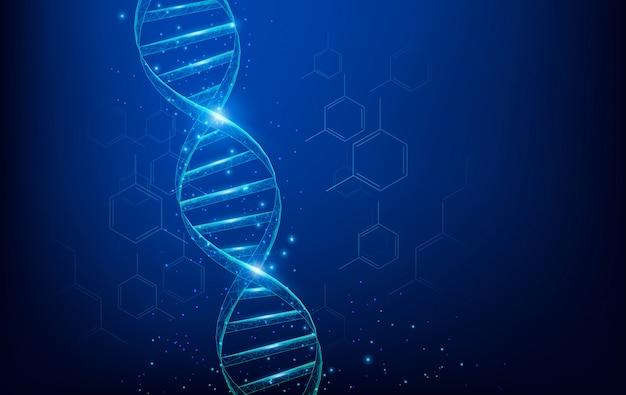 ワイヤーフレームdna分子構造メッシュ、暗い青色の背景上の点、線、および形状から成る低ポリ。科学技術の概念