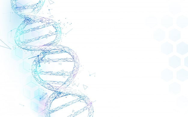 Wireframe dna molecules structure mesh on white background. science and technology concept