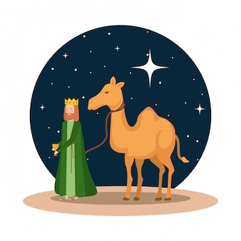 Wise king with camel manger character