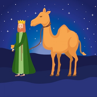 Wise king with camel manger characters