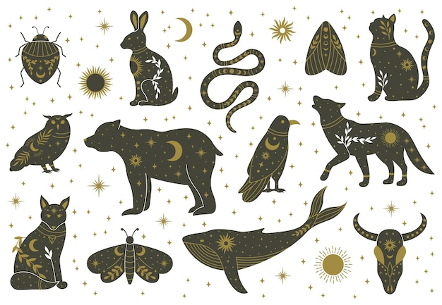 Колдовство волшебный мистический бохо каракули животных и насекомых. волшебный кот, лиса, волк, сова, кит, украшенный луной, звездами, листьями, векторные иллюстрации. бохо волшебные животные