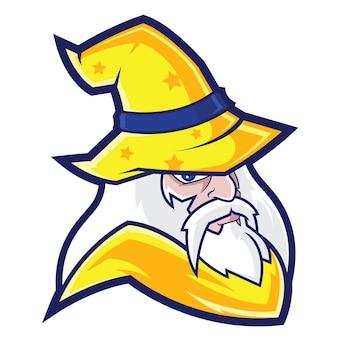 Wizard sports logo