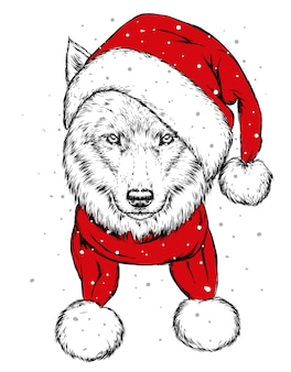 The wolf in the christmas hat. christmas, winter holidays.