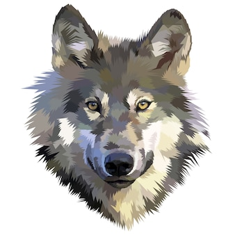 Wolf head icon on polygonal geometric triangle style