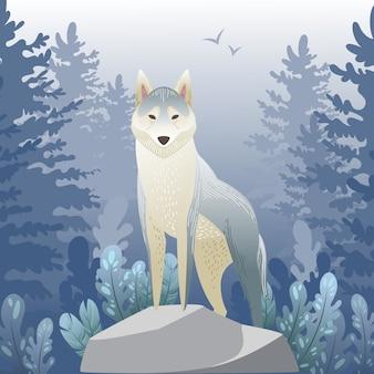 森の中のオオカミ。