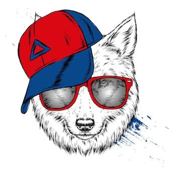 Волк или собака в кепке и очках иллюстрации