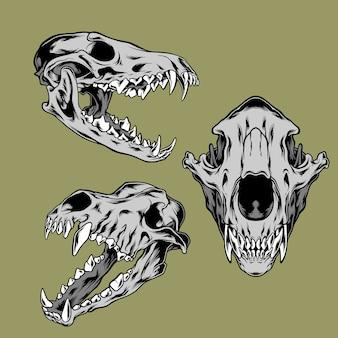 オオカミの頭蓋骨イラストパック