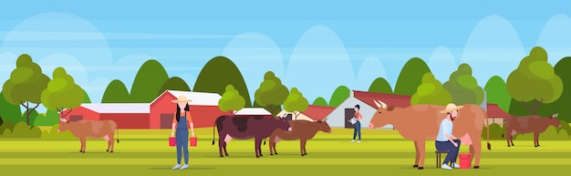 Woman farmer carrying fresh milk pails man milking cow domestic animal cattle eco farming breeding concept farmland countryside landscape  full length horizontal  illustration