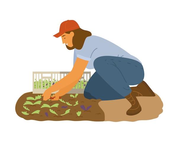 여자 농부 수집 샐러드 나뭇잎 그림 작업.