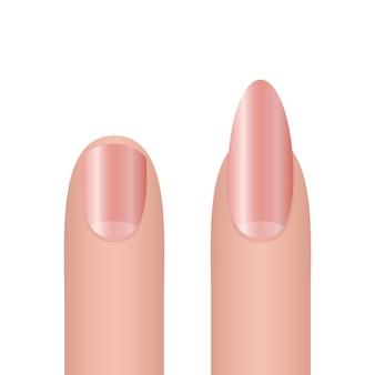 白い背景で隔離の女性の爪の図