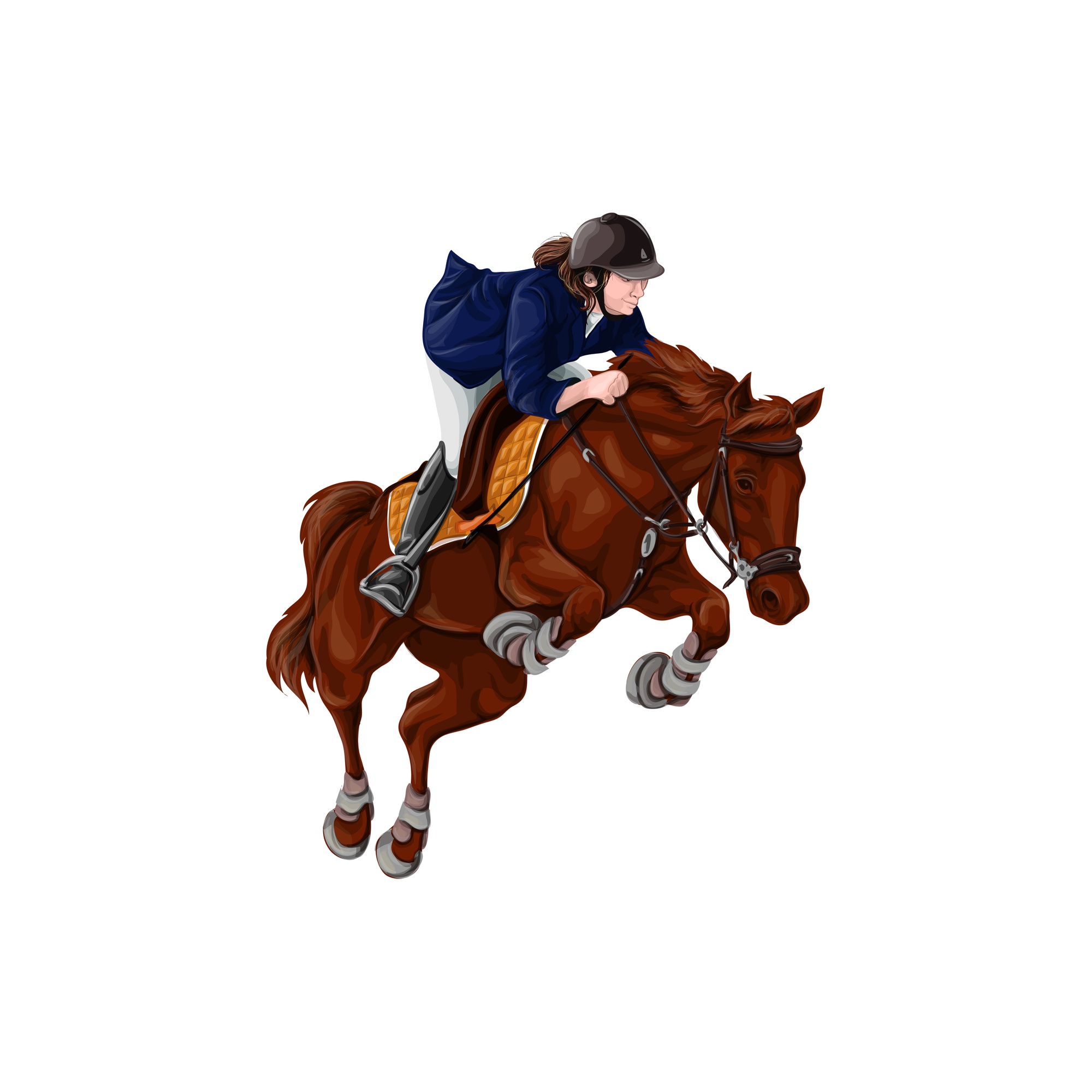 Woman, Girl riding horses Vector Illustration, isolated.