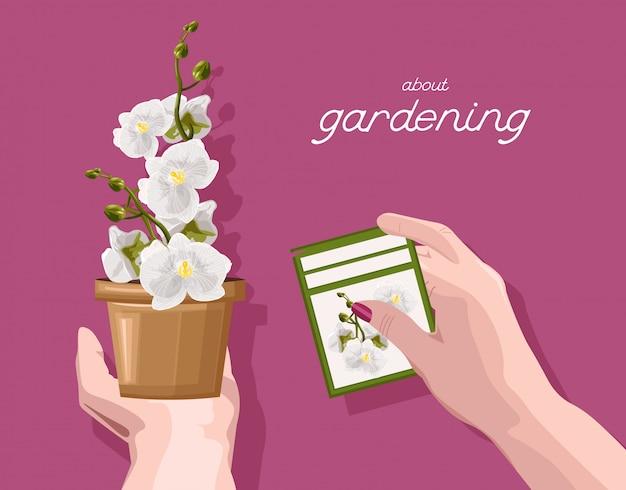 蘭の花の説明と記号を手で保持している女性