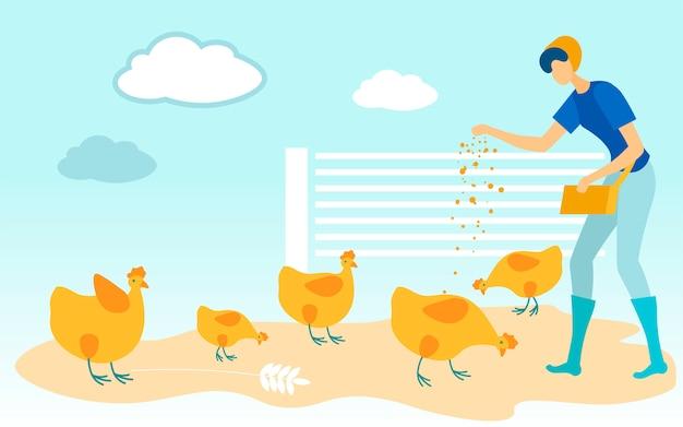 女性は鳥小屋で鶏の食べ物を注ぐ。 。