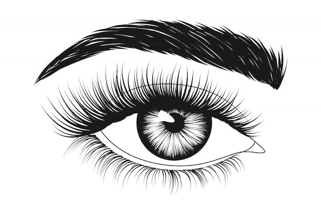 眉毛と長いまつげの女性の目