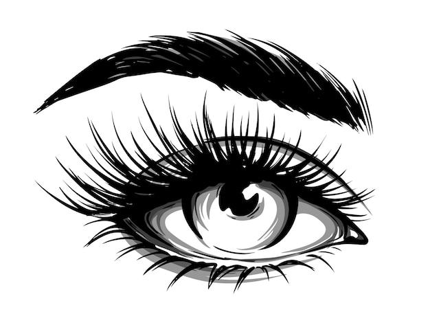 眉毛と長いまつげを持つ女性の目