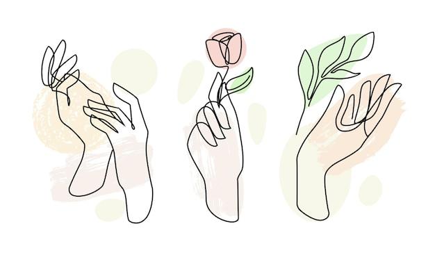 女性の手のライン。女性の絵