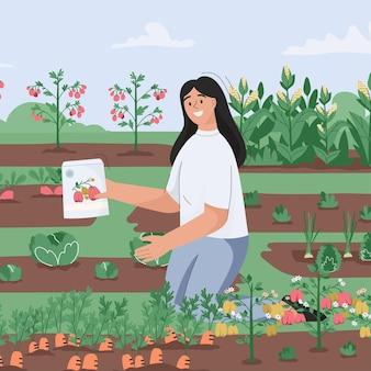 여자는 정원 농부에 묘목을 뿌리고 농업 식물을 자랍니다.