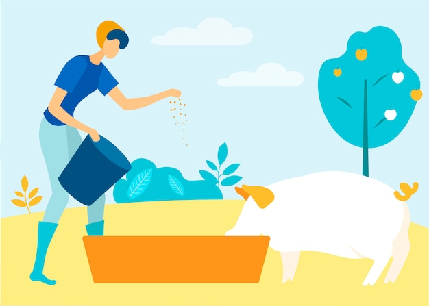 Woman with bucket in hand pouring pig feed  vector
