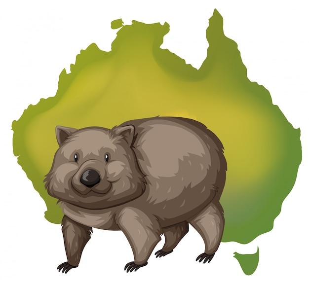 ウォンバットとオーストラリアの地図