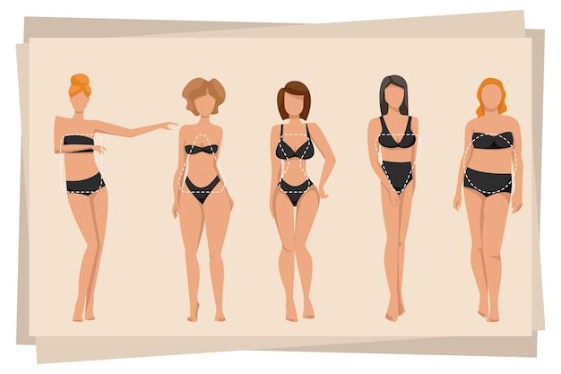 さまざまな体型のイラストを示すランジェリーの女性