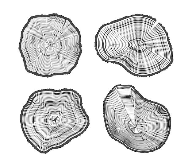 Деревянные иллюстрации Premium векторы