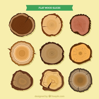 Wood slices of different types of trees