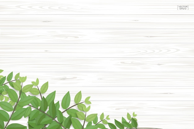 Wood texture background with green leaves. realistic vector illustration.