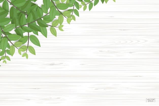 Текстура древесины с зелеными листьями.